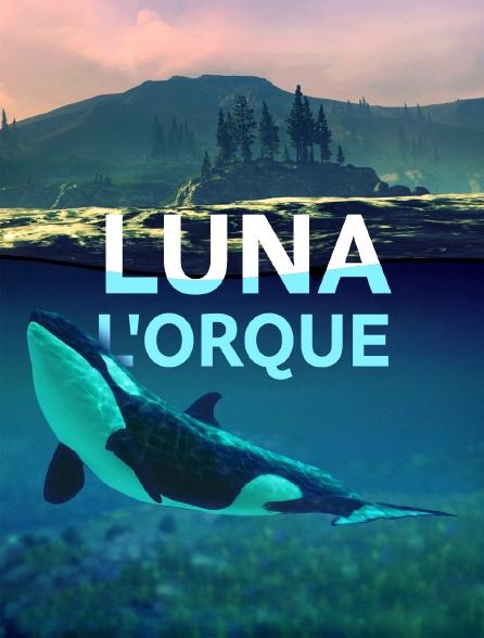 Luna, l'orque