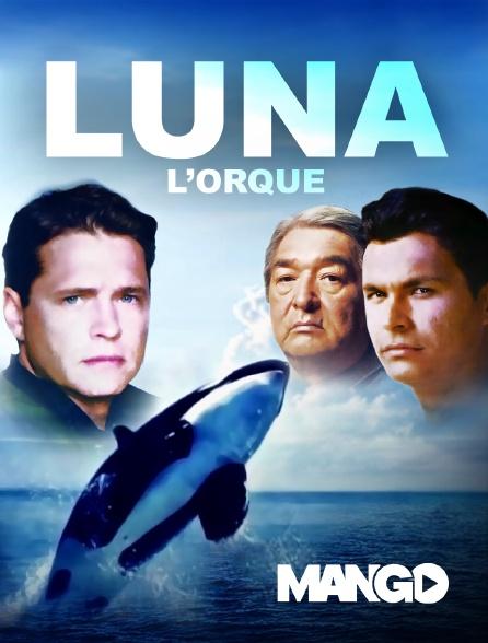 Mango - Luna l'orque