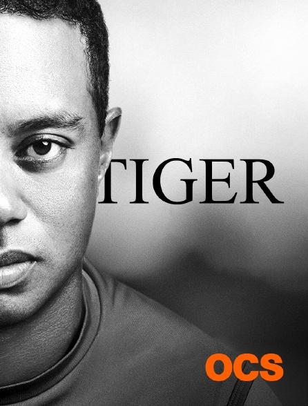 OCS - Tiger