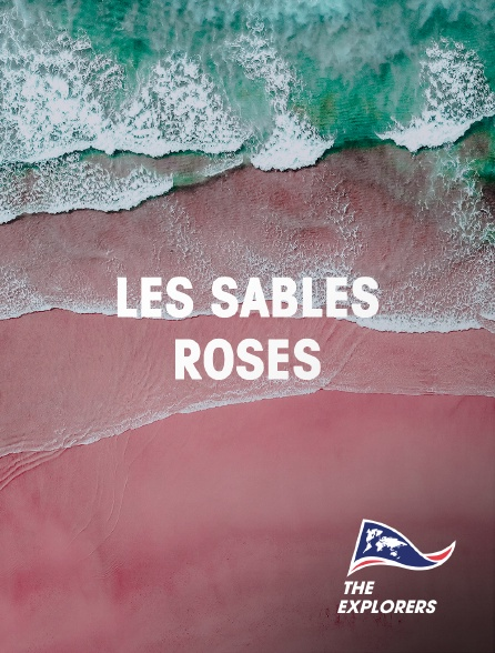 The Explorers - Les sables roses