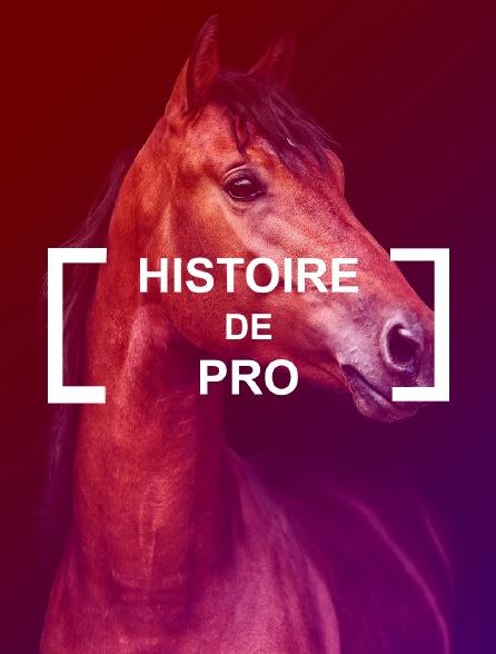 Histoire de pro