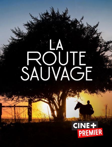 Ciné+ Premier - La route sauvage