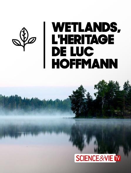 Science et Vie TV - Wetlands, l'héritage de Luc Hoffmann