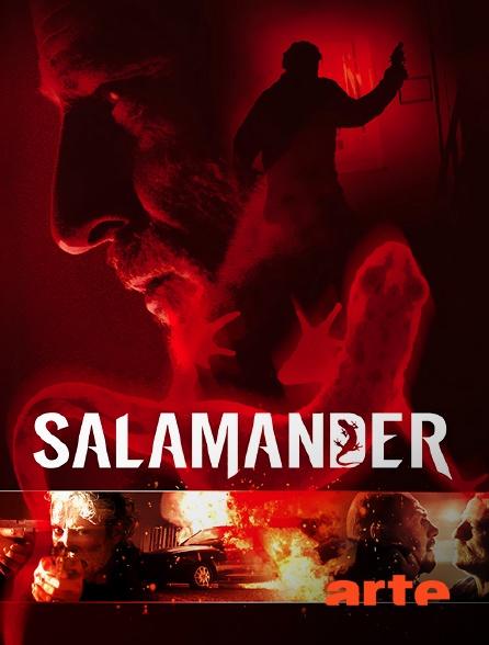 Arte - Salamander
