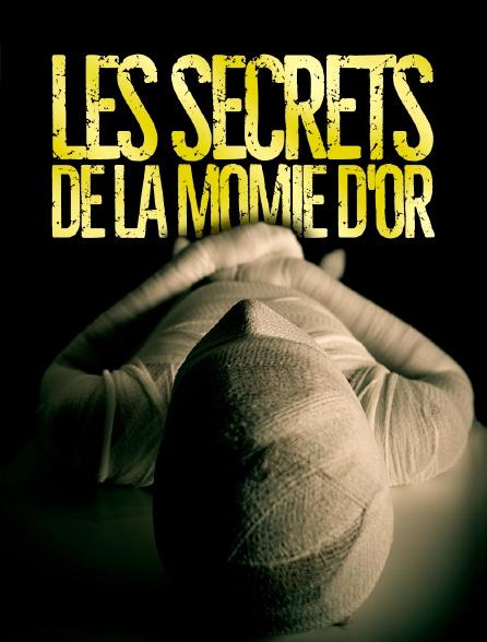 Les secrets de la momie d'or