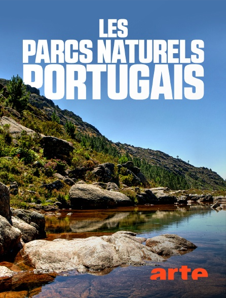 Arte - Les parcs naturels portugais