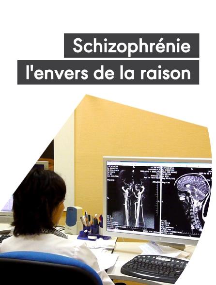 Schizophrénie, l'envers de la raison