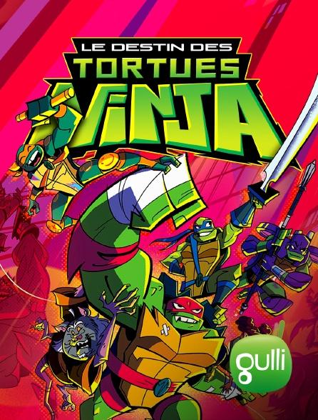 Gulli - Le destin des Tortues Ninja