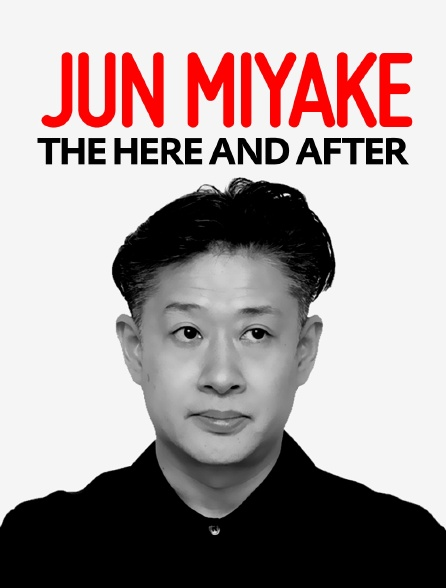 Jun Miyake : The Here and After