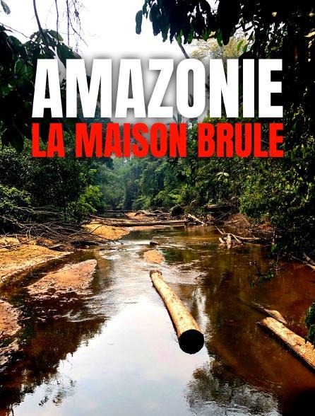 Amazonie, la maison brûle