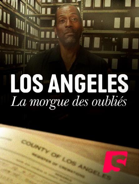 Spicee - Los Angeles : la morgue des oubliés