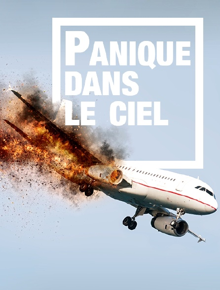 Panique dans le ciel : ces avions qui font le buzz