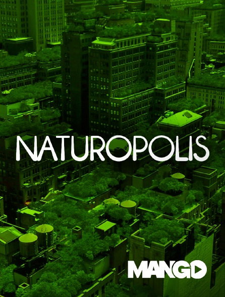 Mango - Naturopolis