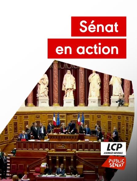 LCP Public Sénat - Sénat en action