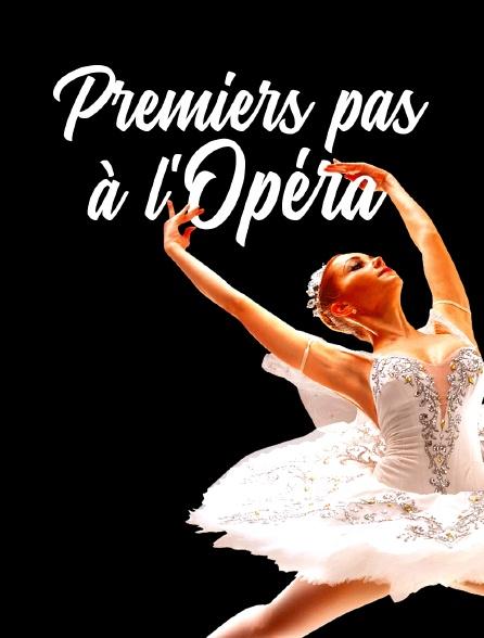 Premiers pas à l'opéra
