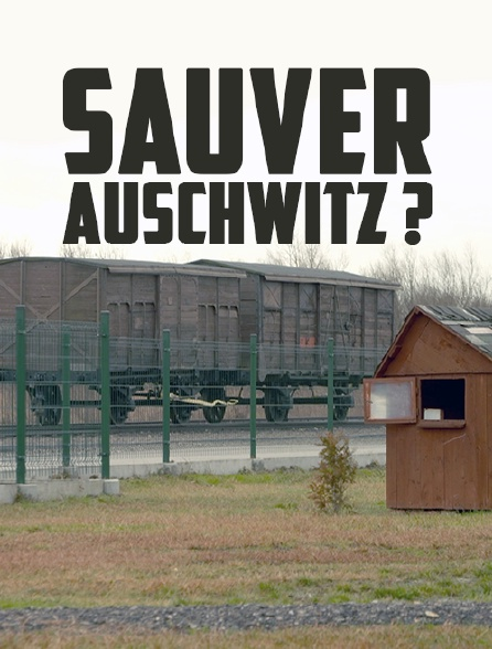 Sauver Auschwitz ?