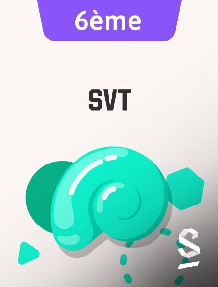 SchoolMouv - SVT - 6ème