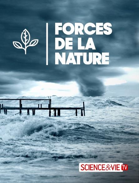 Science et Vie TV - Forces de la nature