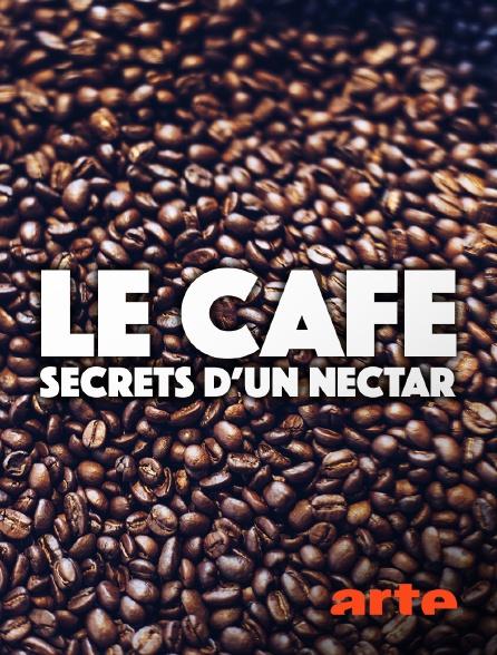 Arte - Le café : secrets d'un nectar