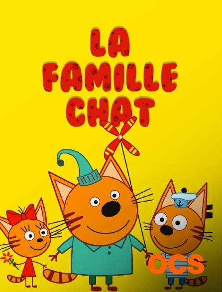 OCS - La famille chat
