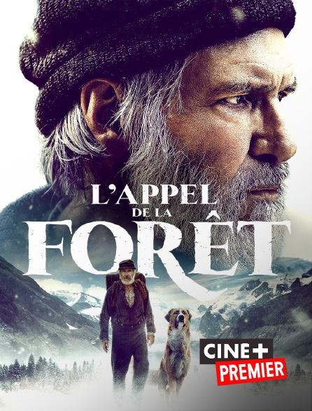 Ciné+ Premier - L'appel de la forêt en replay