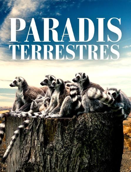 Paradis terrestres