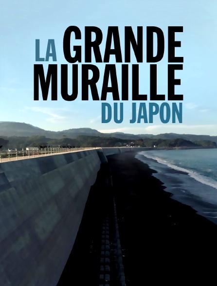 La grande muraille du Japon