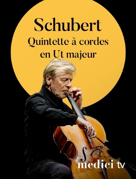 Medici - Schubert, quintette à cordes en Ut majeur - Le Quatuor Ébène et Frans Helmerson