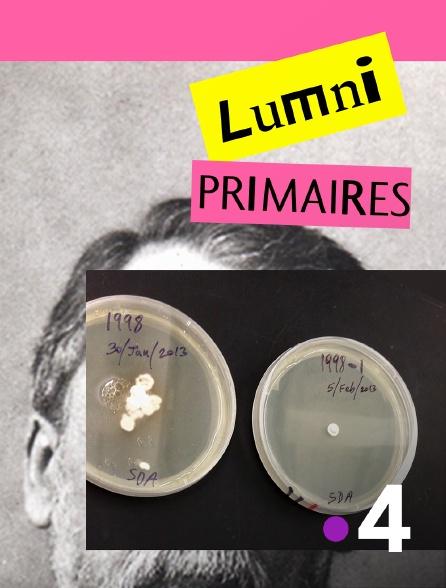 France 4 - Les cours Lumni - Primaire