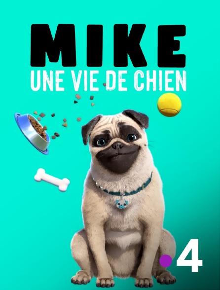 France 4 - Mike, une vie de chien