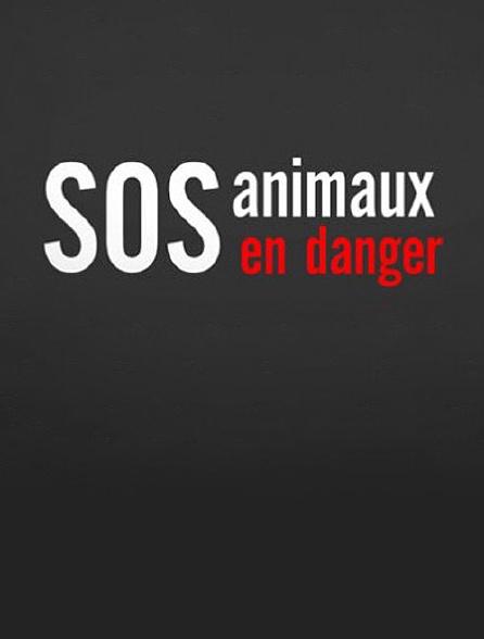 S.O.S. animaux en danger