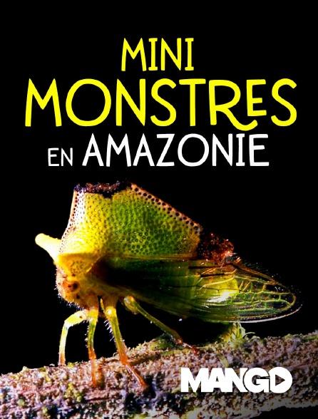 Mango - Mini Monstres en Amazonie