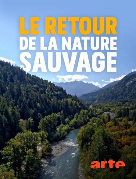 Arte - Le retour de la nature sauvage