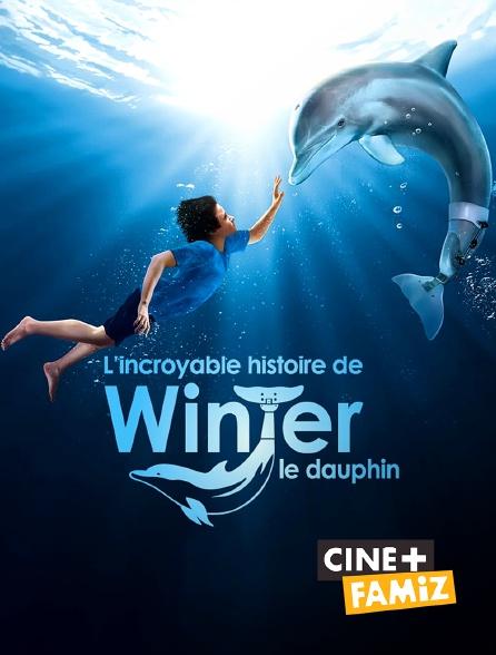 Ciné+ Famiz - L'incroyable histoire de Winter le dauphin