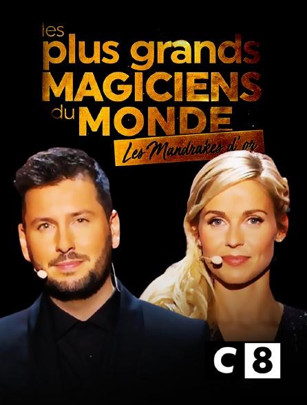 C8 - Les plus grands magiciens du monde : les Mandrakes d'or