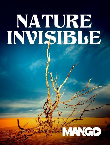 Mango - Nature invisible