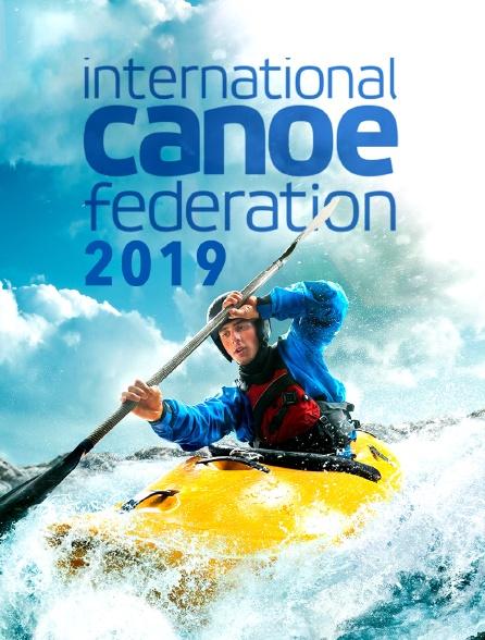 ICF 2019