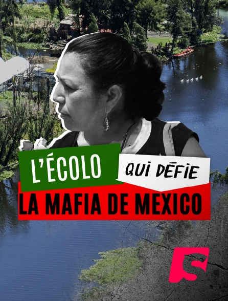 Spicee - L'écolo qui défie la mafia de Mexico