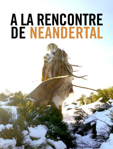 A la rencontre de Neandertal