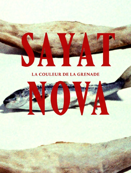 Sayat Nova, couleur de la grenade