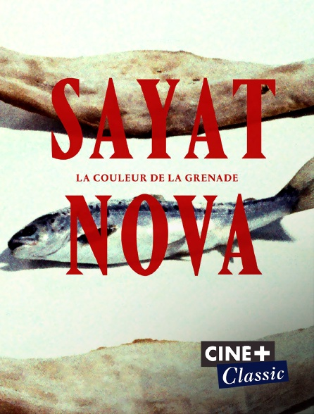 Ciné+ Classic - Sayat Nova, couleur de la grenade