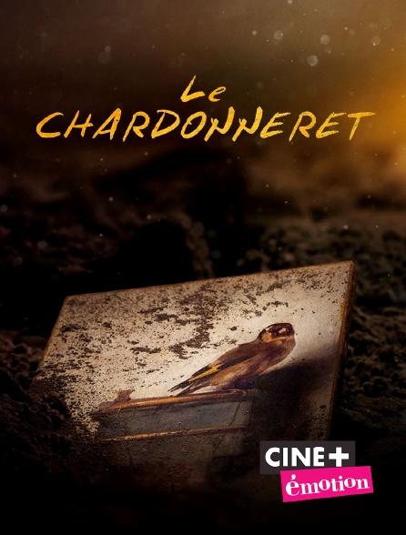 Ciné+ Emotion - Le chardonneret