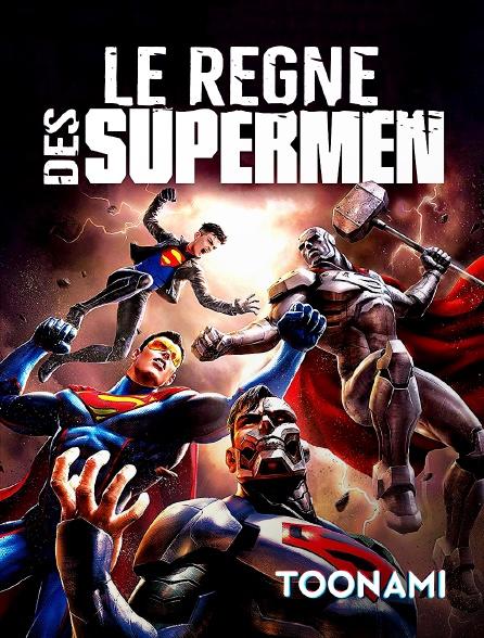 Toonami - Le règne des Supermen
