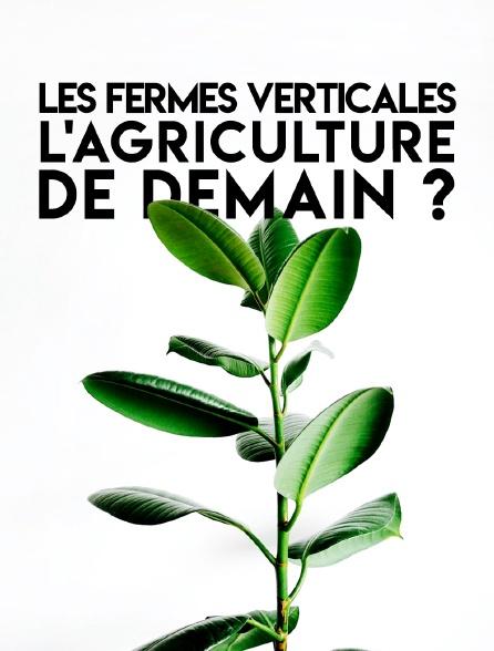 Les fermes verticales : l'agriculture de demain ?