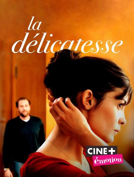 Ciné+ Emotion - La délicatesse