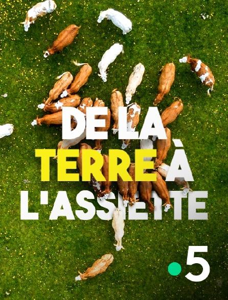 France 5 - De la terre à l'assiette