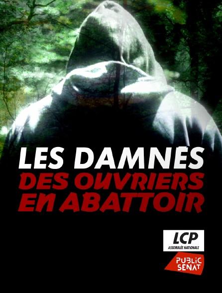 LCP Public Sénat - Les damnés des ouvriers en abattoir