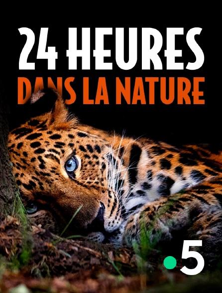 France 5 - 24 heures dans la nature