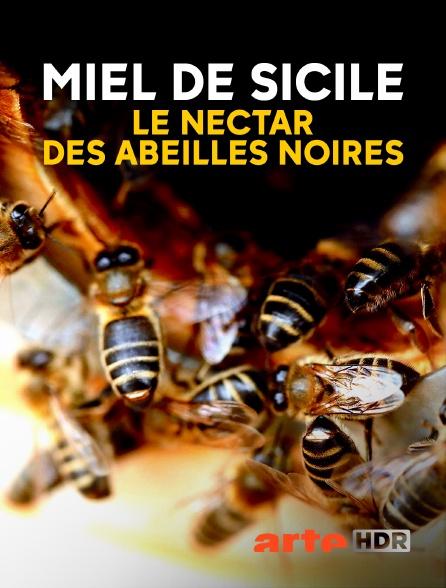 Arte HDR - Miel de Sicile, le nectar des abeilles noires