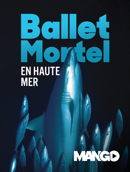 Mango - Ballet mortel en haute mer